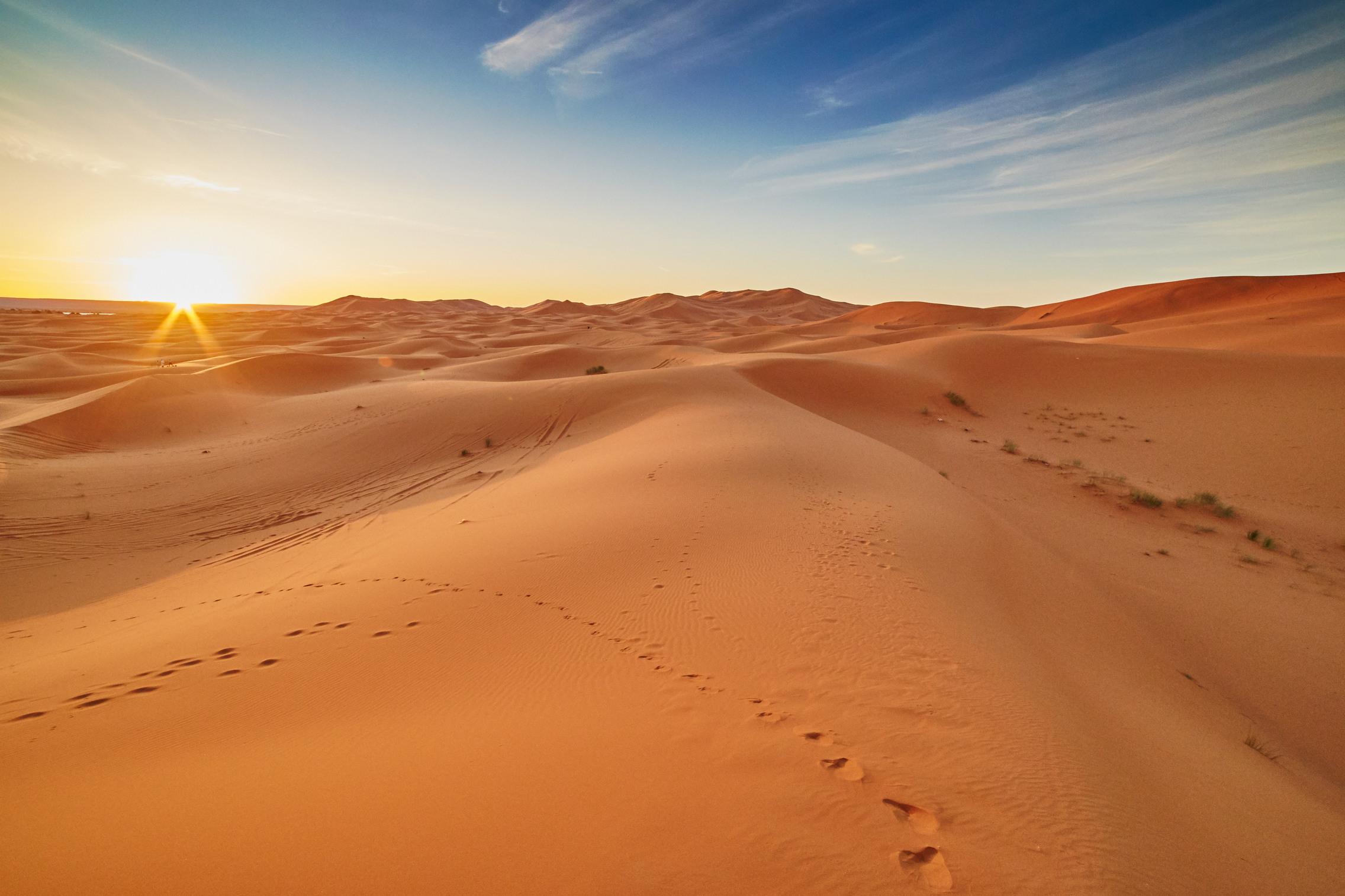 фото в пустыне очень яркие можно использовать